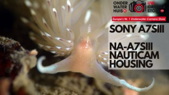 Review Sony α7S III en Nauticam NA-A7SIII