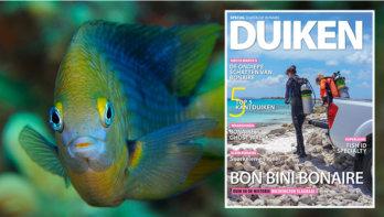 Lees gratis de digitale special DUIKEN op Bonaire