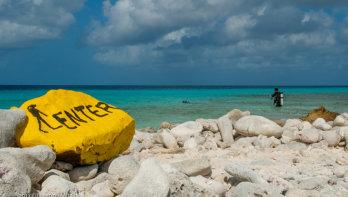 Top 5 Bonaire duikspots met een unieke naam