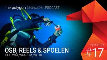 Podcast: OSB, Reels & Spoelen • wat, hoe, waarom, welke