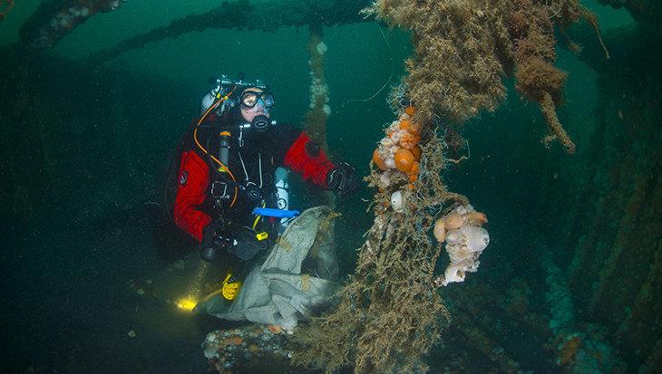 Duikers doen een clean up in de Noordzee