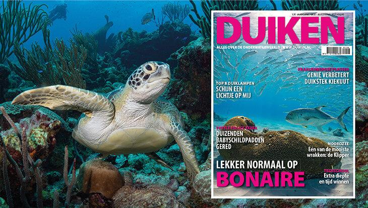 DUIKEN AUGUSTUS: Lekker normaal op Bonaire