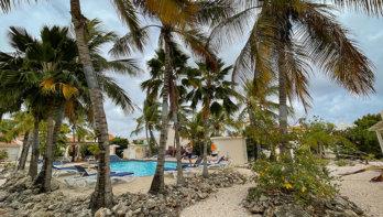 Bij Hamlet Oasis Resort zit je goed voor een relaxte duikvakantie op Bonaire