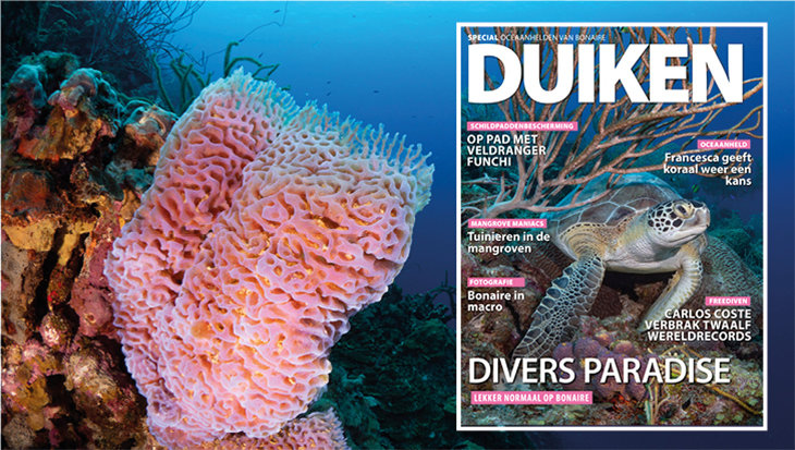 Gratis special: Oceaanhelden van Bonaire